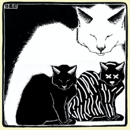 catpace